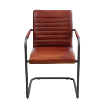 Dining Chair Sammy R25 WA Cognac 1_clipped_rev_1